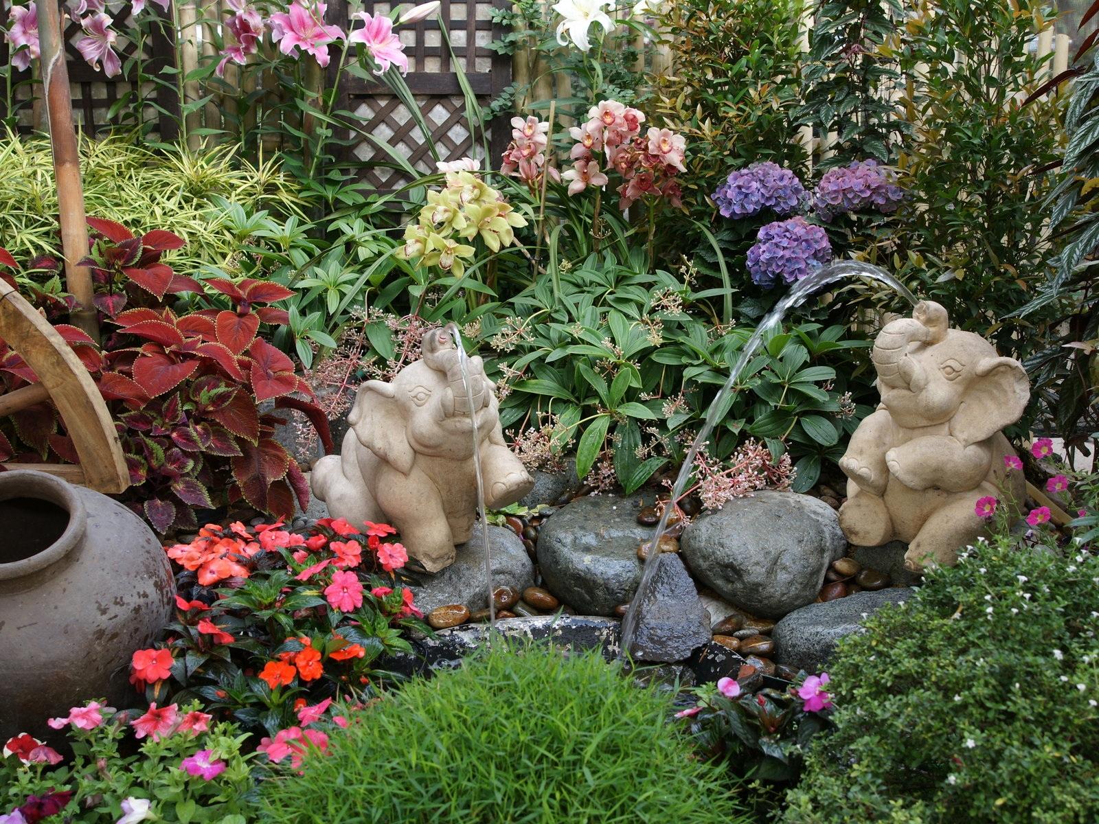 Jardines y plantas 5