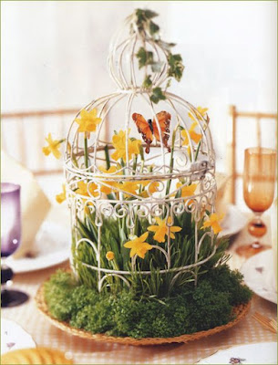 jaula primavera