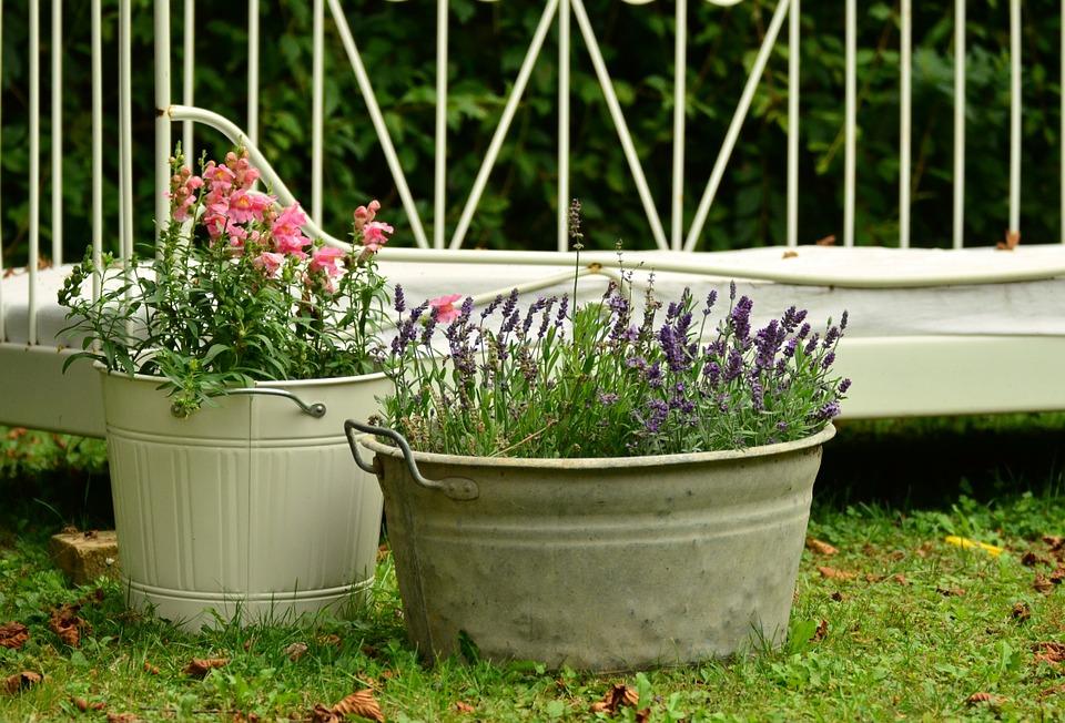 Macetas de flores para el jardín