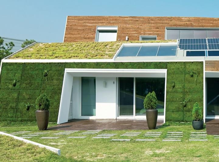 casa ecologica jardin maceta