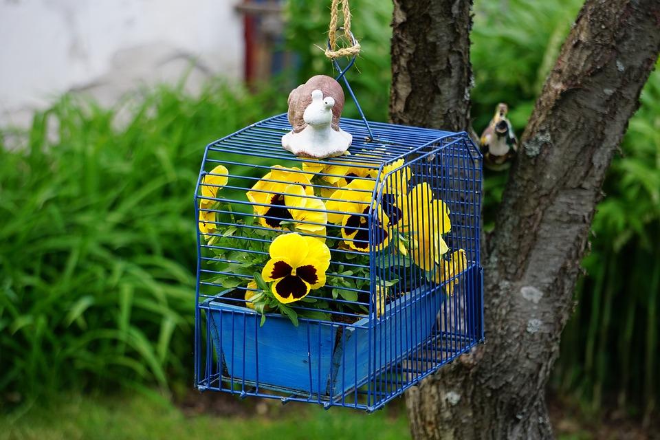 jaula azul con flores amarillas