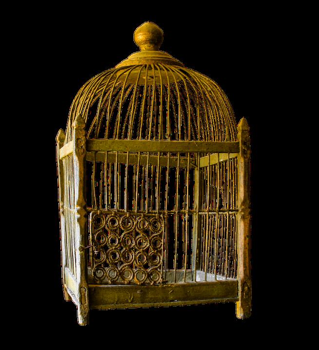 Ideas de decoración con jaulas de pájaros 24
