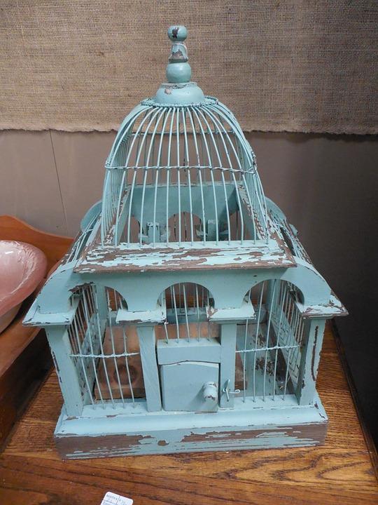 jaula victoriana azul