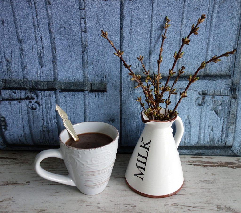 taza porcelana blanca y lechera con planta